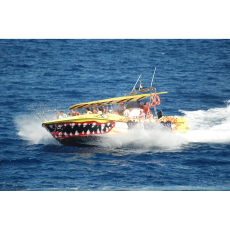Sea Riders