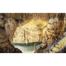 Cuevas del Drach y Perlas Majorica